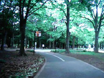 yoyogi_cycle.jpg